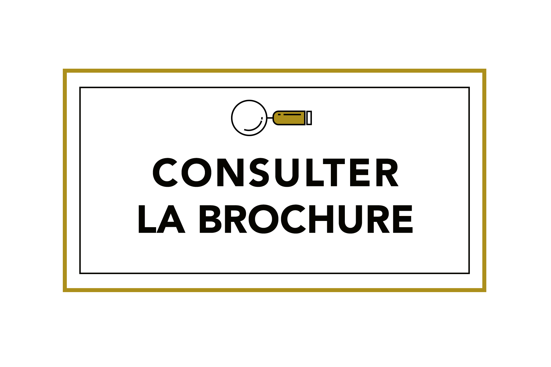 bouton-consulter-brochure.png